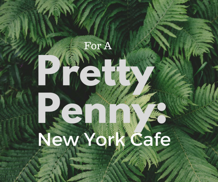 For a Pretty Penny Vol. 2 // New York Cafe